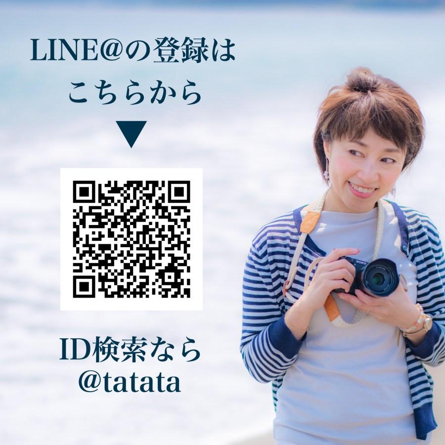 IMG-8878