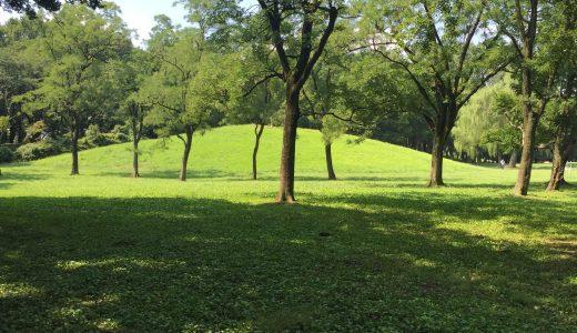 自然の波動に合わせる  ~リトリートとミニマリズムの共通点~  沼畑直樹