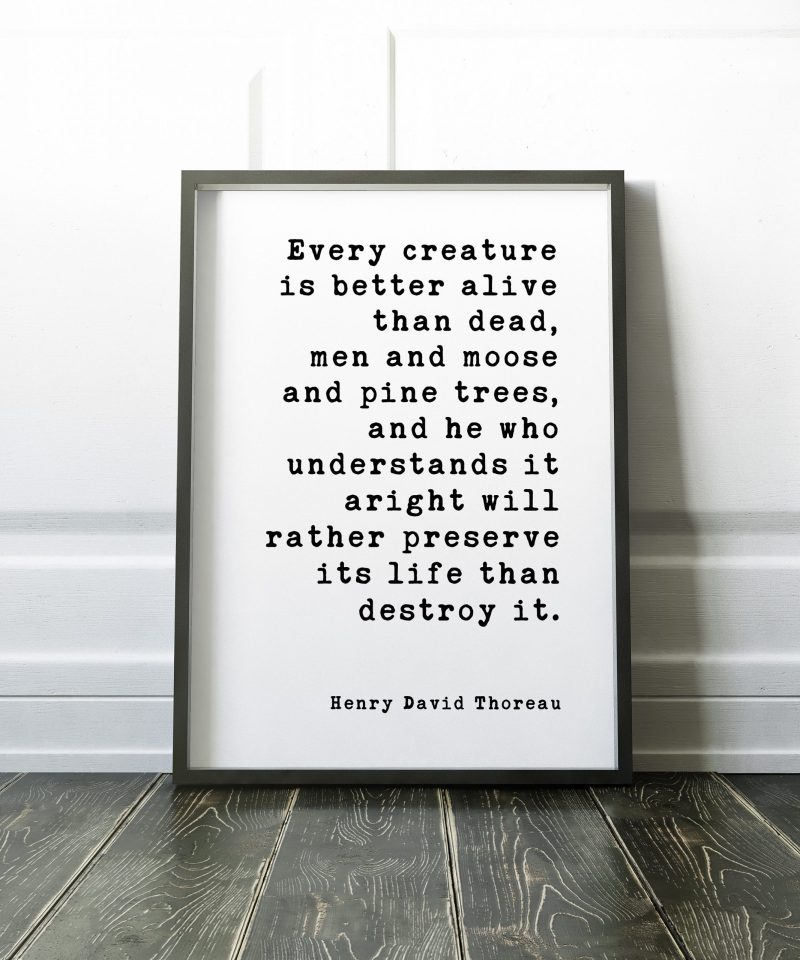 Every creature is better alive than dead, men and moose and pine trees... ― Henry David Thoreau // Print   Nature Lover   Environment