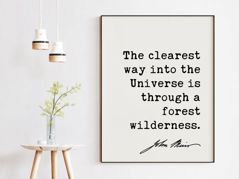The clearest way into the Universe is through a forest wilderness. John Muir Quote Art Print - Nature - Environmentalist - John Muir Quote