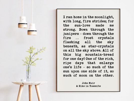 John Muir Quote I ran home in the moonlight, with long, firm strides; for the sun-love made me strong.  Art Print | A Hike in Yosemite