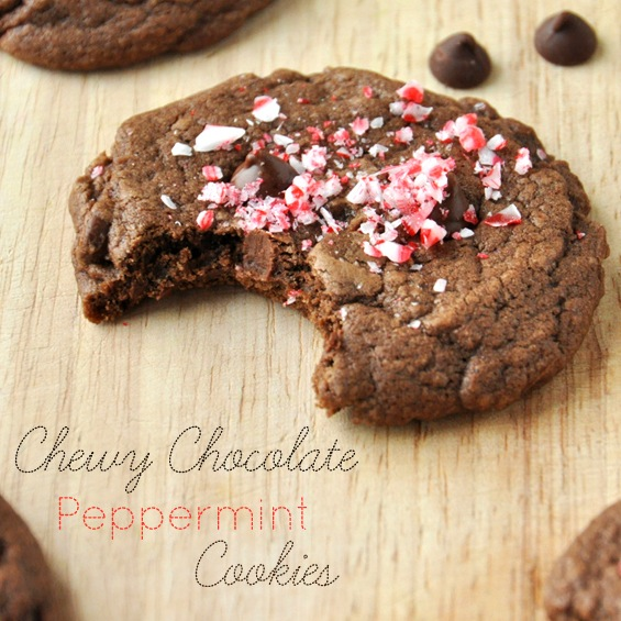 little bakers kitchen grease trap chewy double chocolate peppermint cookies   minimalist baker