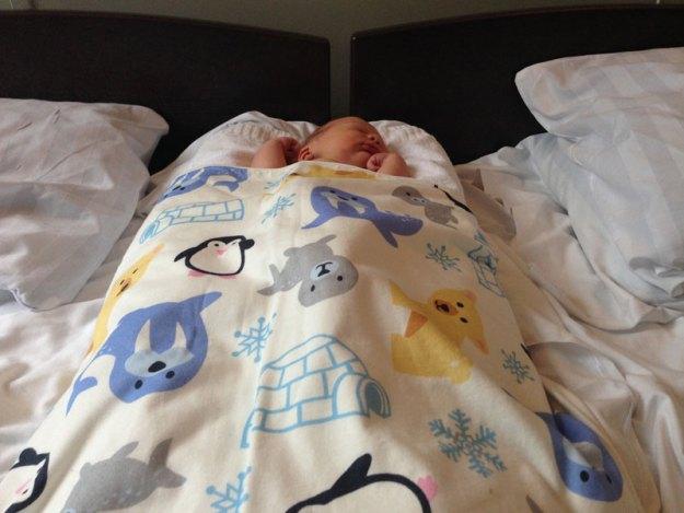 i babynest på BB