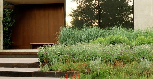 Modern landscape design  20 ideas for a stylish garden