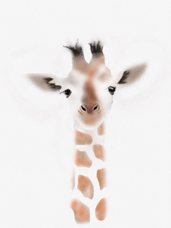 Gustaf Giraffe Illustration by Nic Pinguet