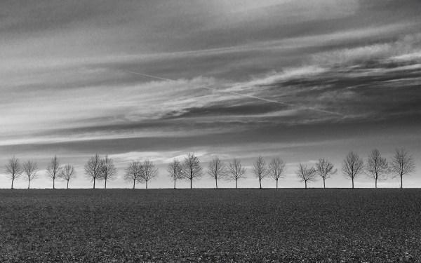 minimalist - landscapes