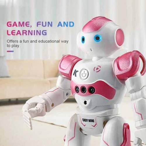 Humanoid Robot Toy
