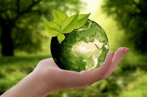 Eine Hand hält eine grüne Weltkugel mit taubedeckten Blättern