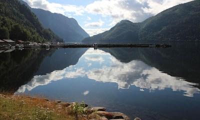 camper trip noorwegen