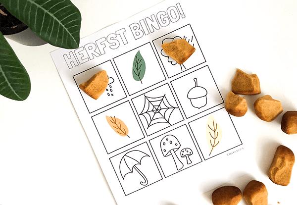 herfst bingo printable voorbeeld