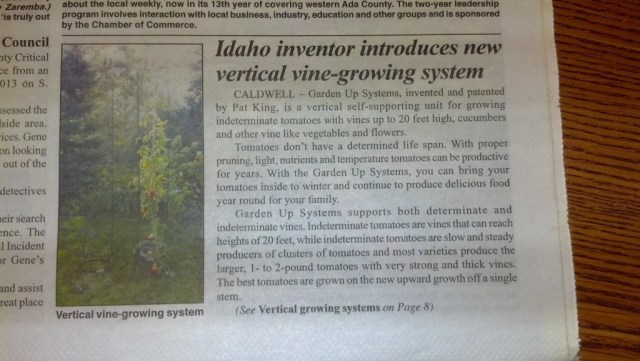 And another local has some ideas on vine growing, I liked this article, I wish I could find it to link.