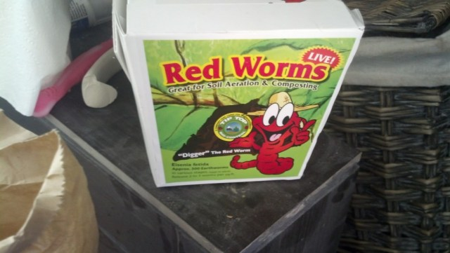 I ended up getting three boxes of worms, each box has about 300-400 worms apperently.