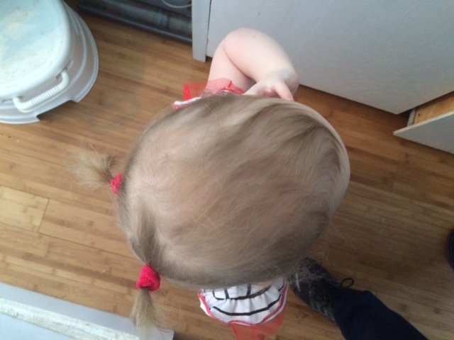 first pig tails