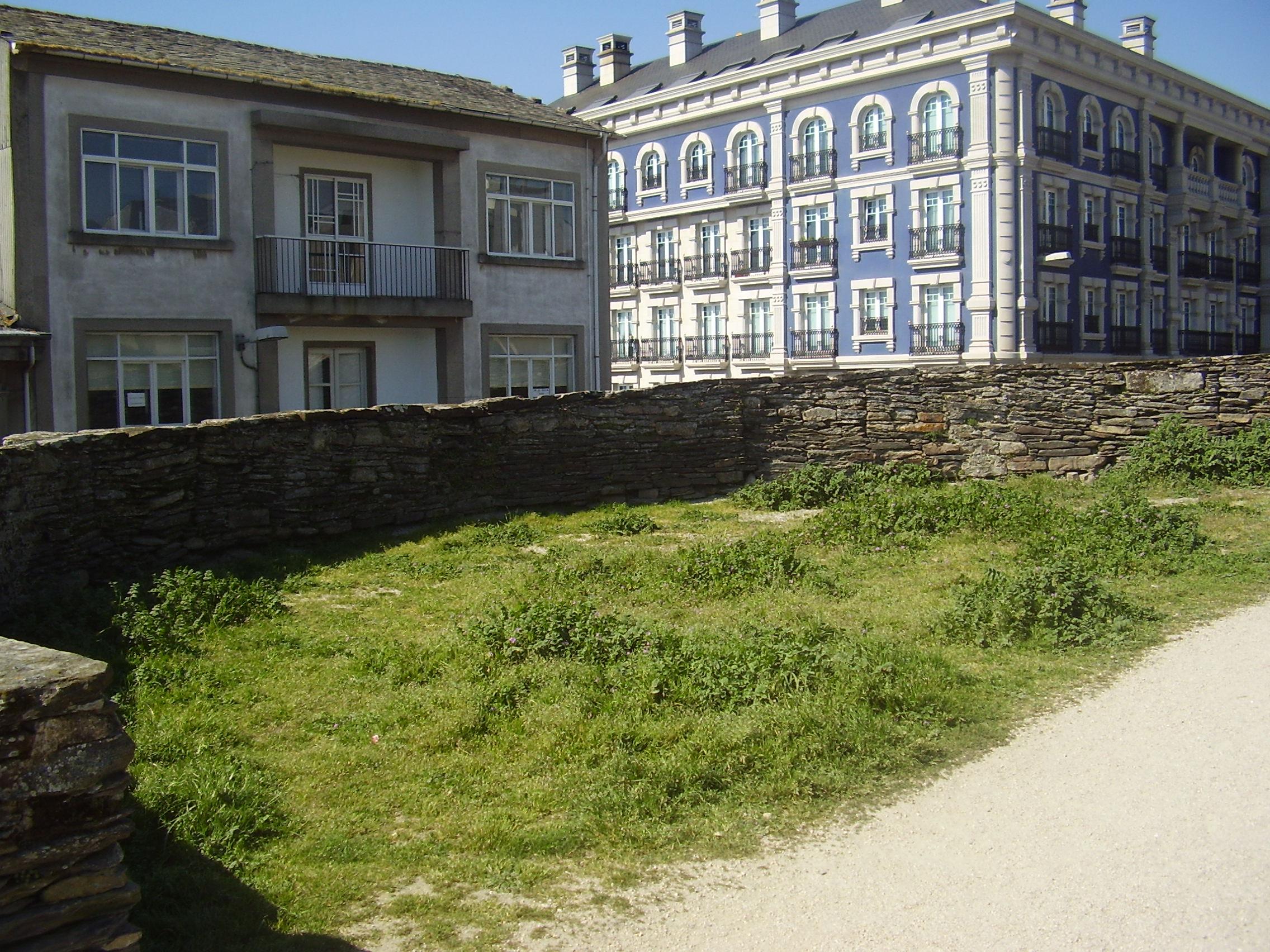 hierbas-muralla-lugo-004