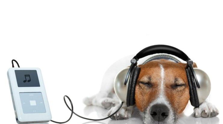 Música e produtividade pessoal
