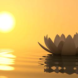 10 benefícios (muito científicos) do mindfulness