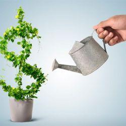 Minimalismo e finanças pessoais