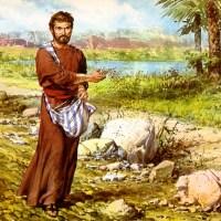 Resumen #5: Libro predicando con frescura