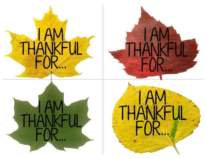Thanksgiving Leaf Craft Idea