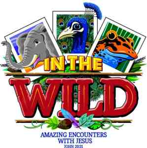 VBS 2019 logo from Lifeway In the Wild