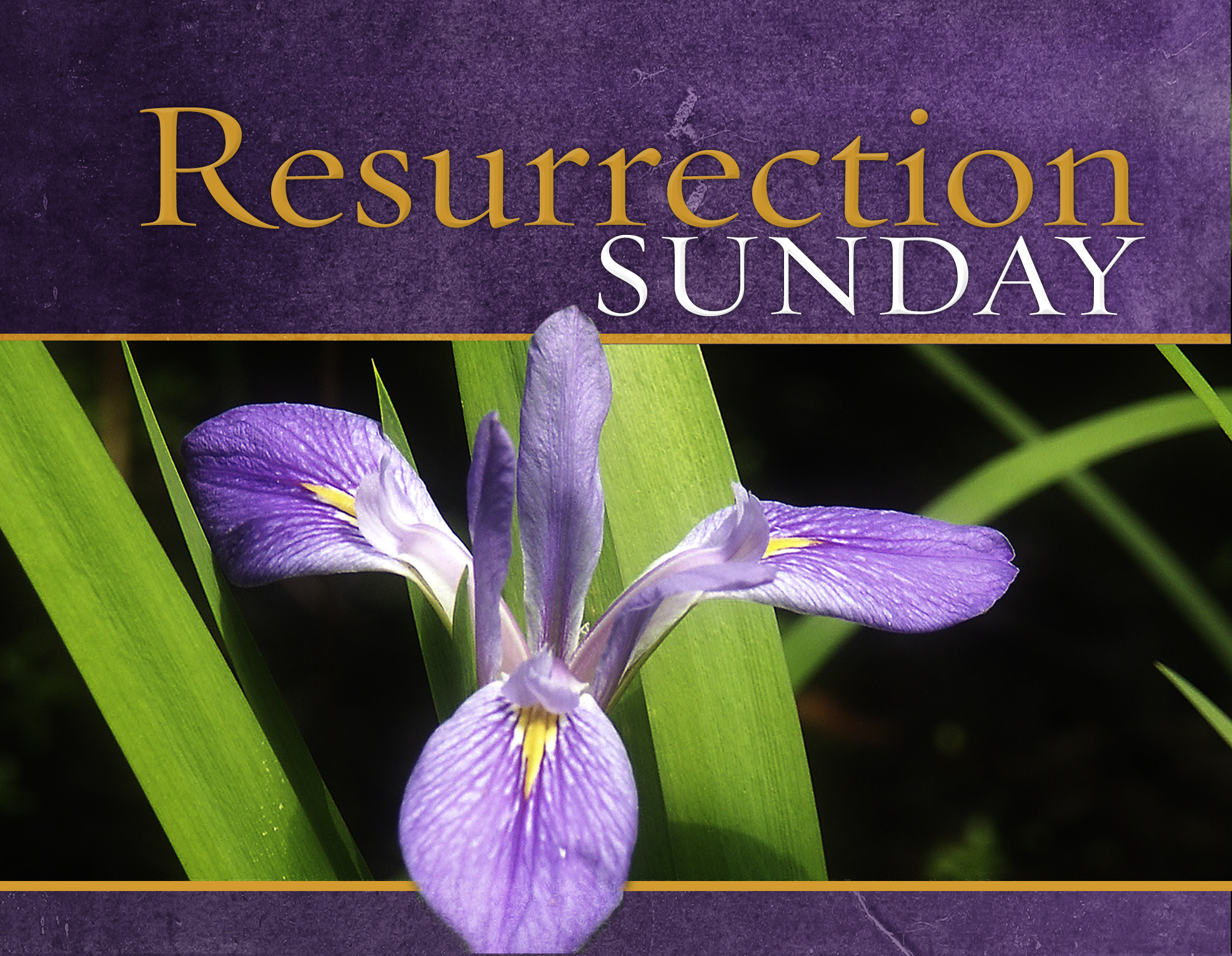 http://ministry127.com/sites/default/files/Resurrection%20Sunday-Easter%20(title).jpg