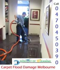 Carpet Flood Damage Melbourne | Ministry of Cleaning ...
