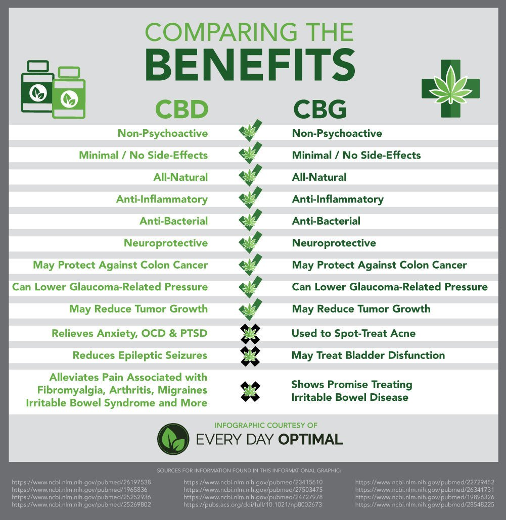 An infographic comparing CBD vs. CBG: while both are non-psychoactive, their health benefits differ.