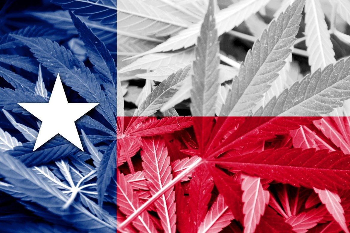 A new bill legalizes hemp in Texas. Photo: The Texas flag superimposed on a background of hemp leaves.