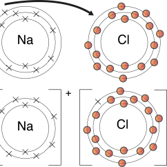 Ionic Bond Dot Diagram Of Lytic And Lysogenic Cycle Topic 2a What Is Everyone Actually Talking About When