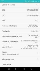 P8-Premium-Dual-Sim-GRA-UL10-Firmware-B390-Update-.jpeg
