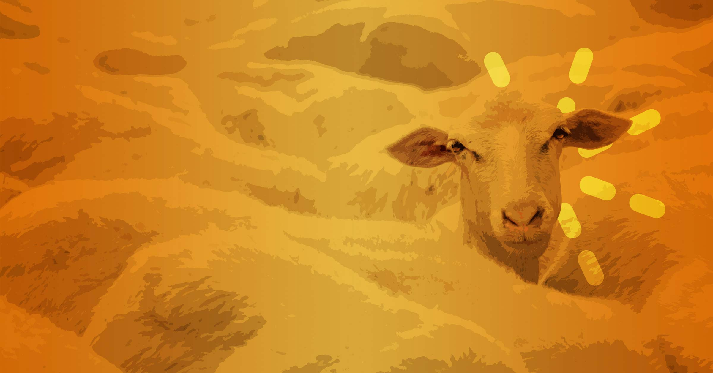Parable Of The Sheep And The Goats Elementary Lesson