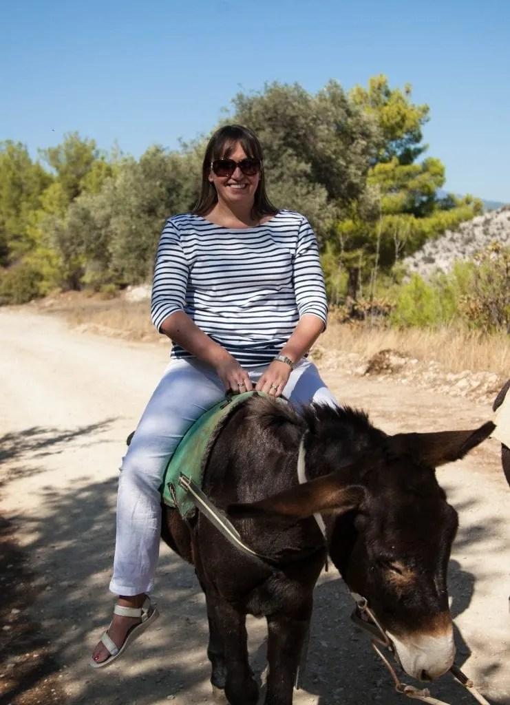 Apesia Hills Donkey Sanctuary Limassol Cyprus www.minitravellers.co.uk