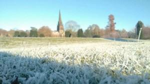 frosty grass at clumber park