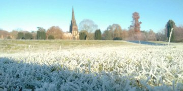 frosty grass at clumber park