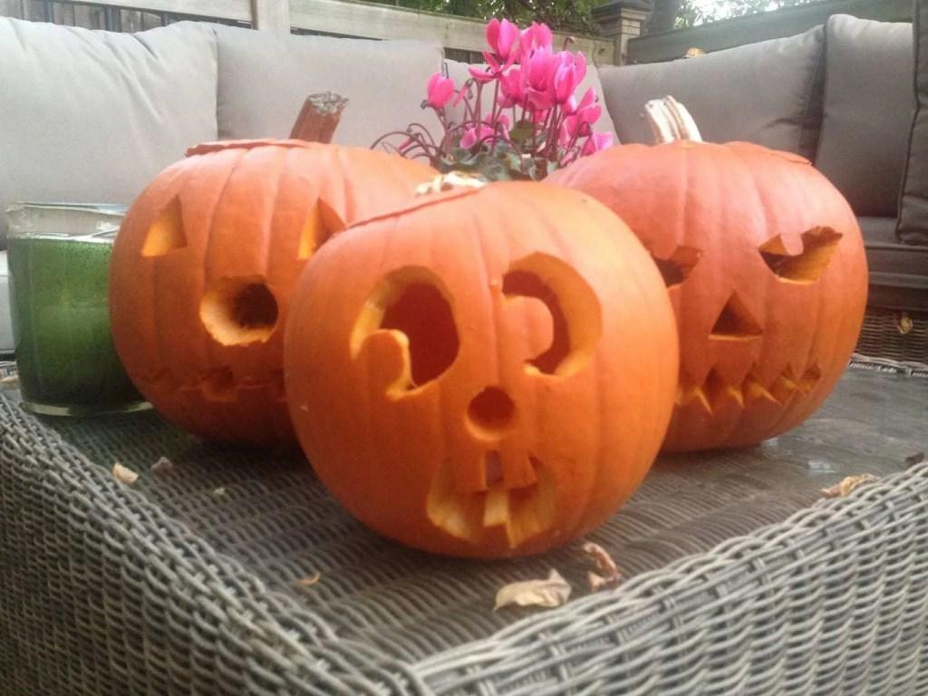 Halloween at Drusillas Park