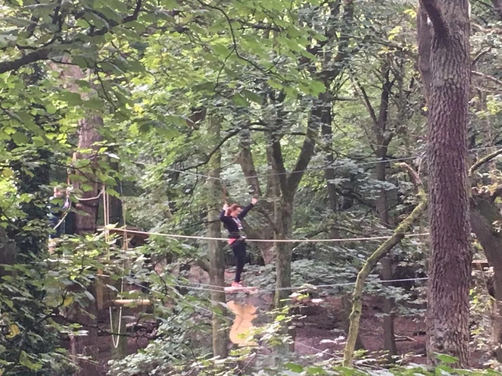 Treetop Trek Review - Is it a family adventure?
