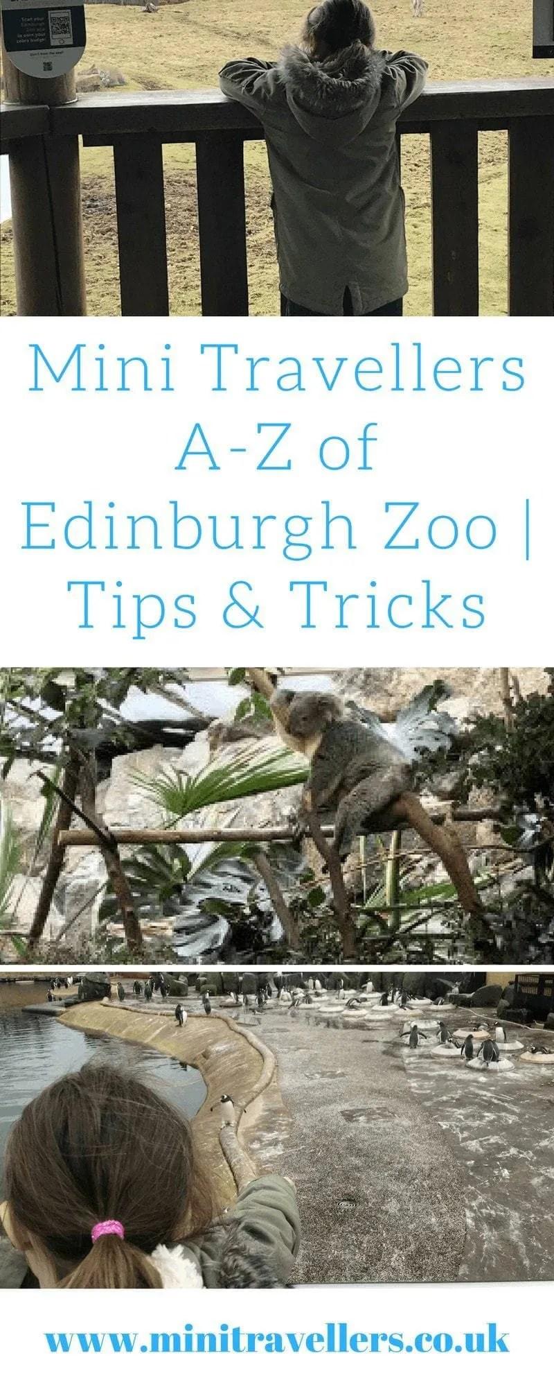 Mini Travellers A-Z of Edinburgh Zoo _ Tips & Tricks