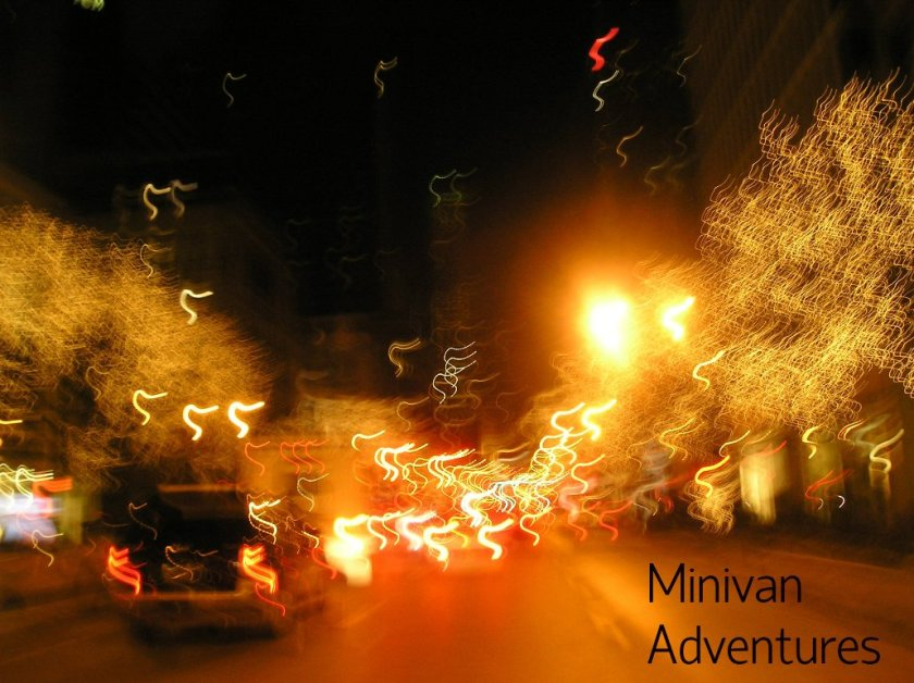 My picture didn't turn out well, but the Mag Mile all lit up for the holidays is a beautiful sight to behold.