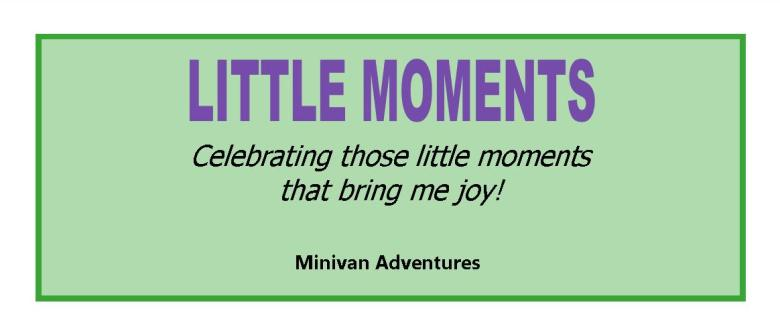 Little Moments by Minivan Adventures: Celebrating those little moments that bring us joy!
