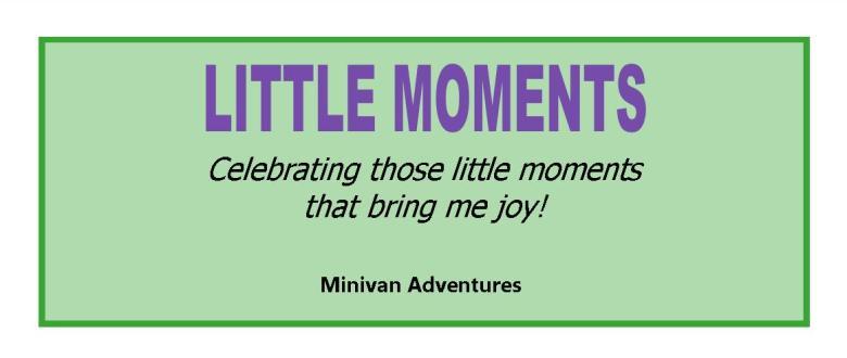 Little Moments by Minivan Adventures: Celebrating those little moments that bring us joy!