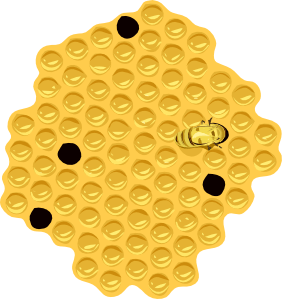 beehoneycomb