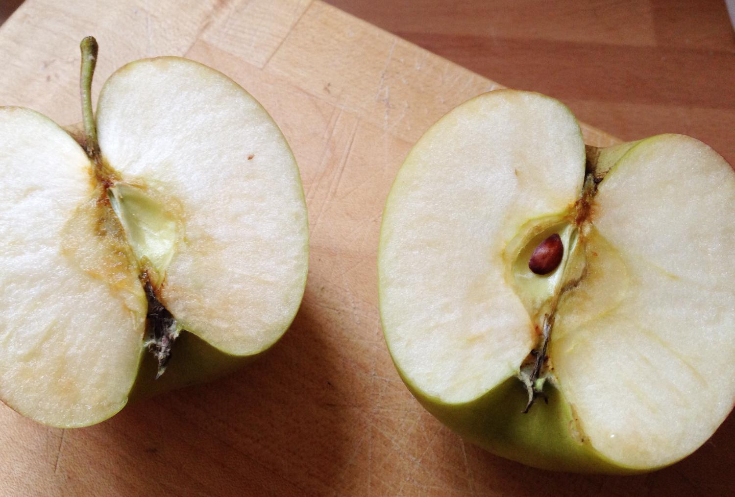 Why Do Apples Turn Brown An Explanation For Kids