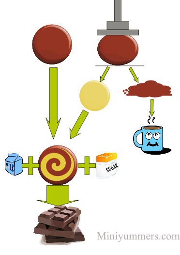 Stage of chocolate making - miniyummers.com