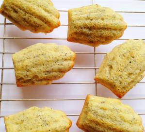 Lemon and Poppyseed Madeleines