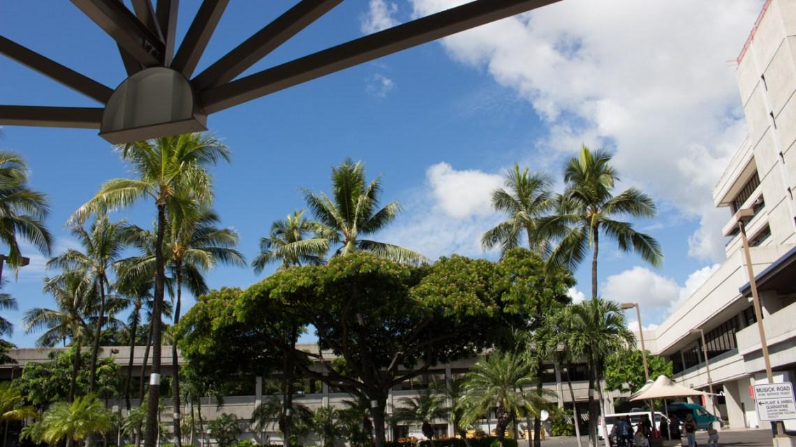 子連れハワイ旅行 ANAのビジネスクラスでホノルル空港へ