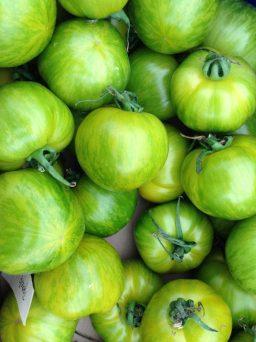 Skønne grønne tomater
