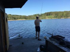 Der fiskes