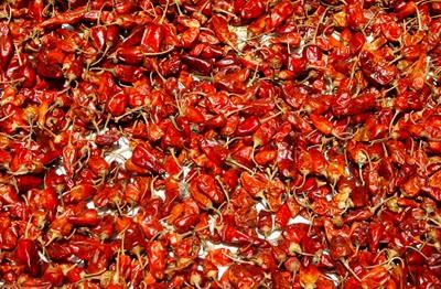 krydder chili india