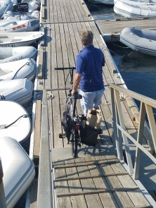 82017 bikes grocer into dingy nantuck