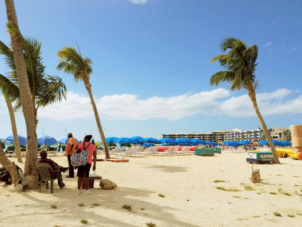 A group of people on a beach with palm trees Description generated with very high confidence